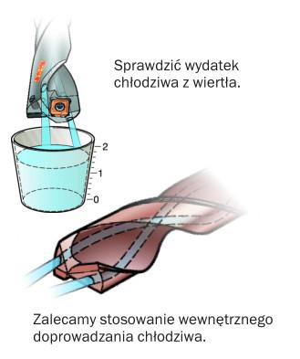 chlodziwo